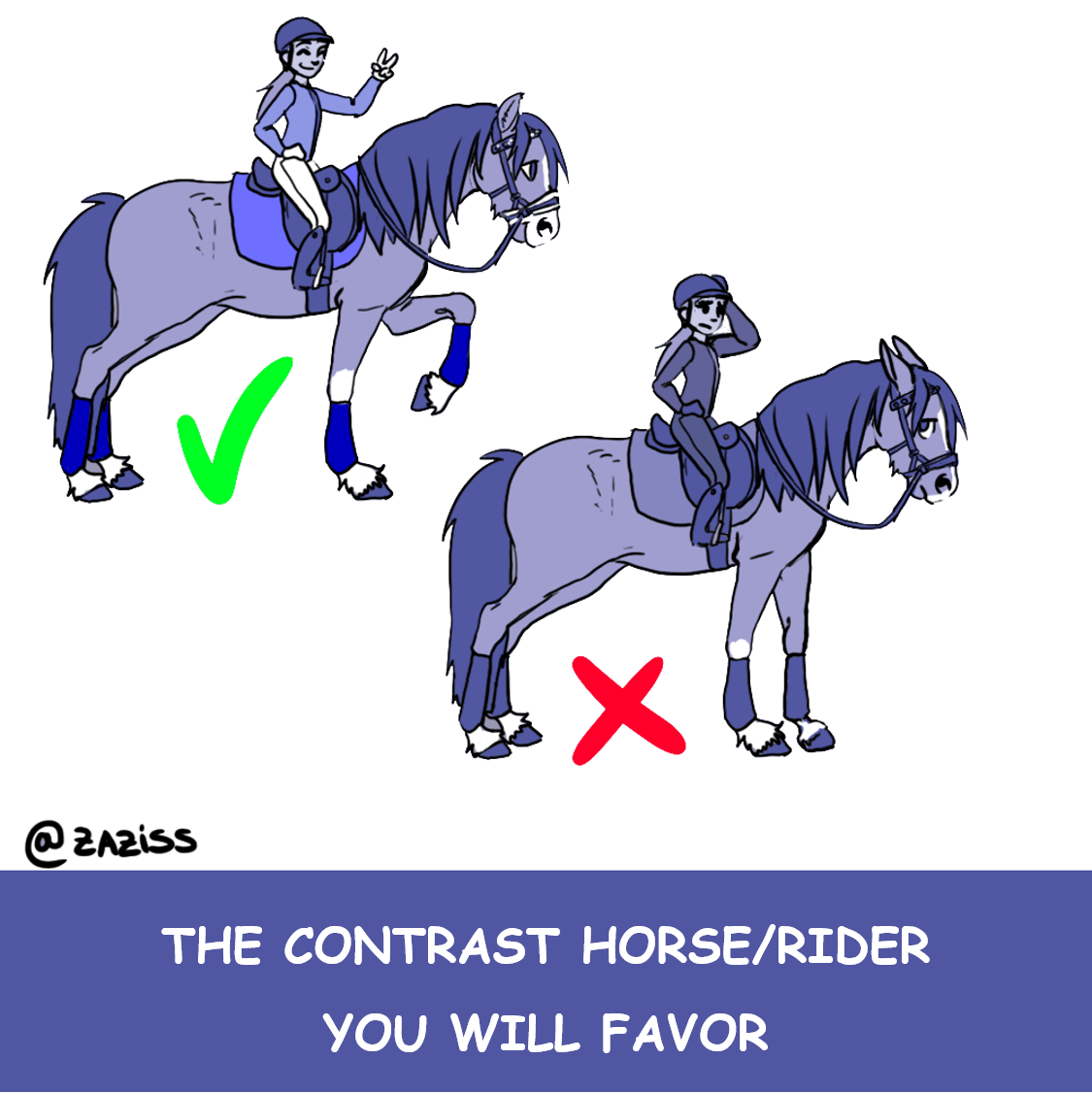the contrast horse/rider you will favor